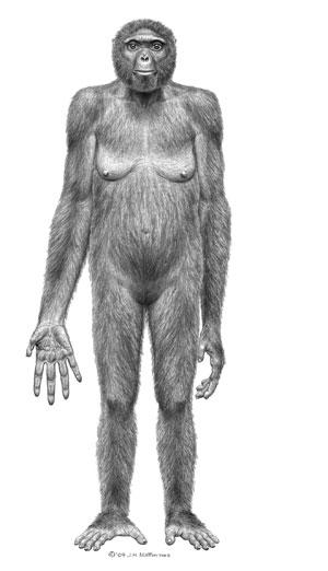 Ardi era uma fêmea com cerca de 1,20 metros que viveu há cerca de 4,4 milhões de anos em África